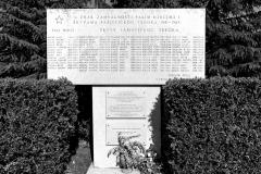 Spomenik u Šajinima